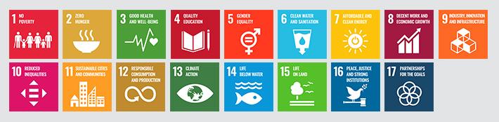 Ziele für nachhaltige Entwicklung der UN – Sustainable Development Goals